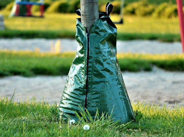 Zavlažovací vak u stromu