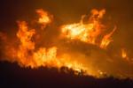 Lesní požáry v parku Los Padres
