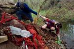 Úklid odpadků v lese