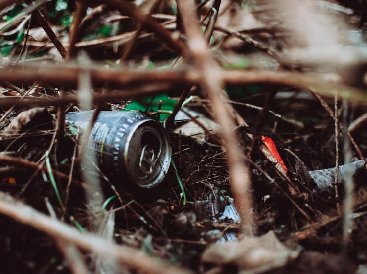 Odpad v lese