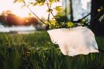 Příroda znečištěná plastovým odpadem