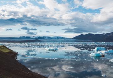 Tání ledovců