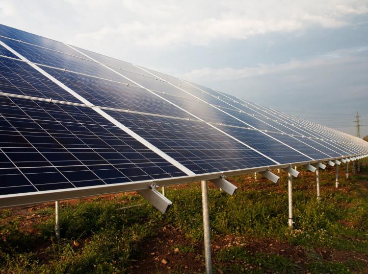 Solární park