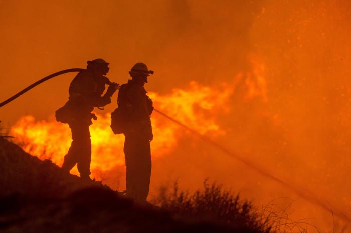 Hasiči při hašení lesního požáru