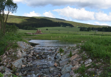 Koryto potoka Kunštát na Rychnovsku