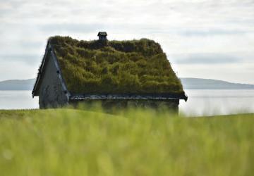 Zelená střecha domu