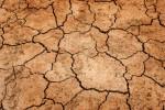 Vyprahlá zem jako důsledek sucha