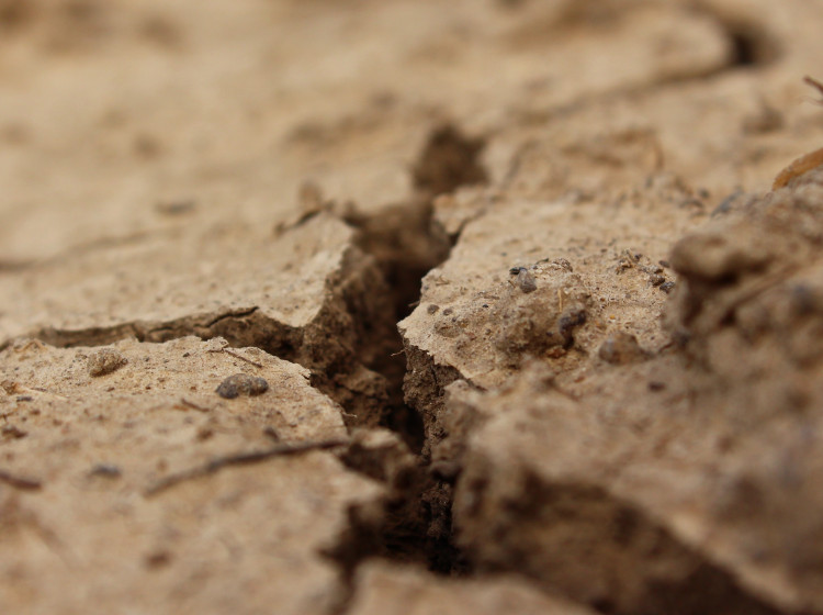 Vyprahlá zemina