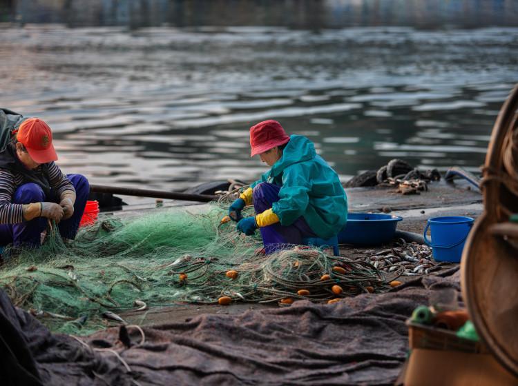 Rybářské sítě