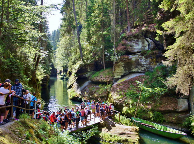 Davy turistů v NP České Švýcarsko