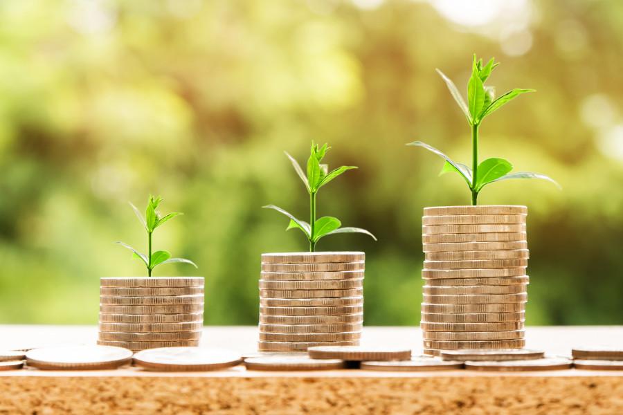 Ekologické dotace pomohou ušetřit
