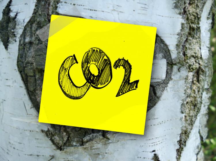 Oxid uhličitý - CO2