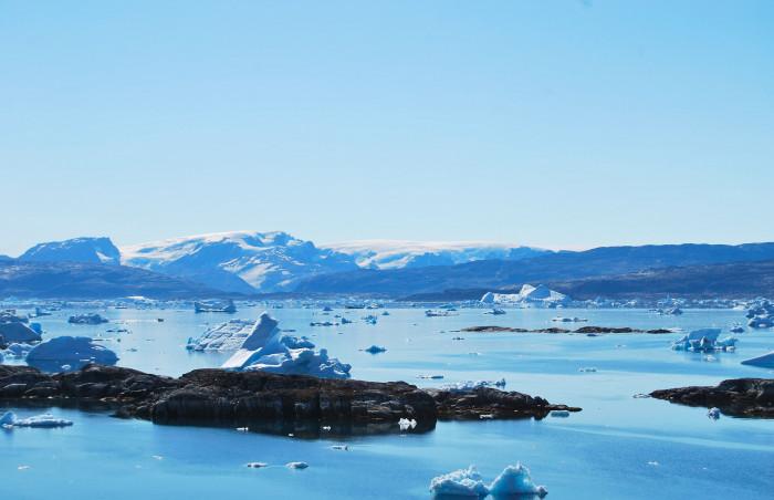 Arktický mořský led